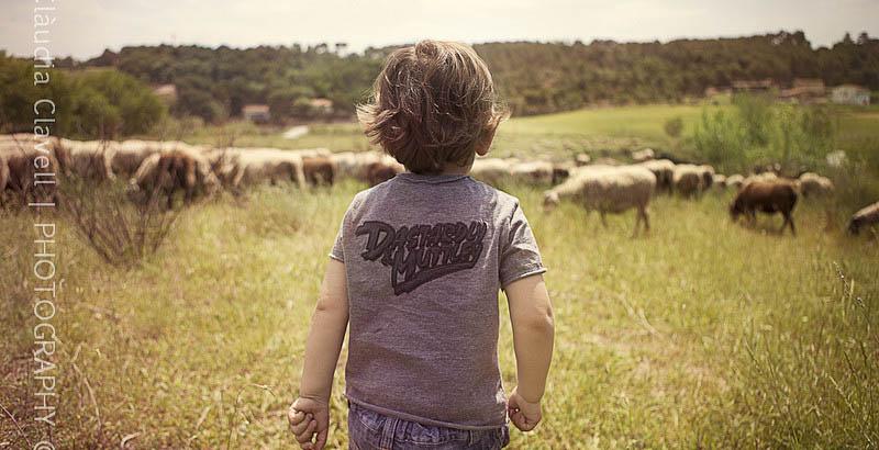 Cuento ovejas